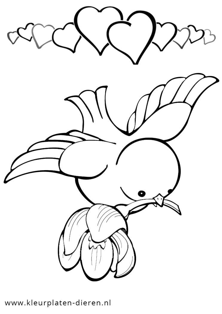 Kleurplaten Over Vogels.Kleurplaten Kleurplaat Vogel Idee U00ebn Over Kleurpagina